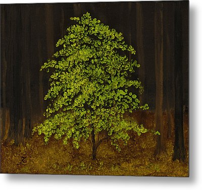 Deep Forest Metal Print