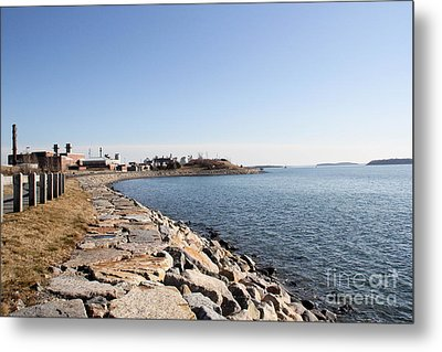 Deer Island Trail Metal Print by Extrospection Art