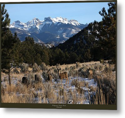 Metal Print featuring the photograph Deer With Cimmaron Mountain Backdrop by Marta Alfred