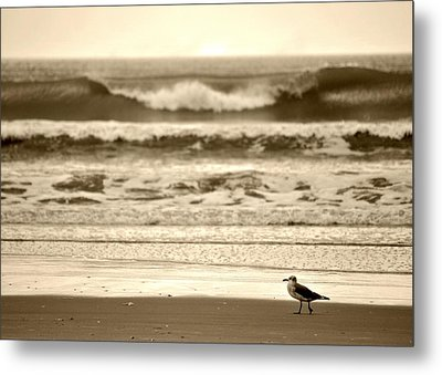 Metal Print featuring the photograph Deliberate Solitude by Kelly Nowak