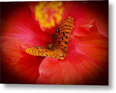 Delicate Visitor Metal Print by Theresa Johnson