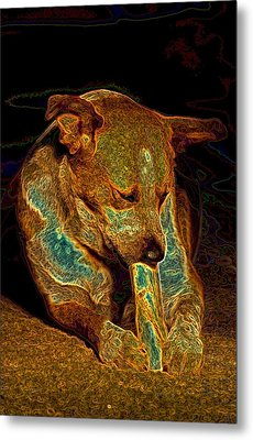 Delicious Bone Metal Print by One Rude Dawg Orcutt