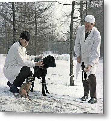 Demikhov's Laboratory Dogs, 1967 Metal Print by Ria Novosti