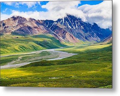 Denali National Park, Alaska Usa Metal Print by Feng Wei Photography