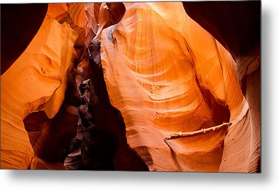 Depths Of The Canyon Metal Print by Adam Pender