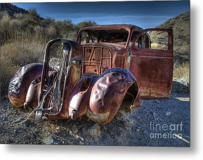 Desert Beauty Metal Print by Bob Christopher