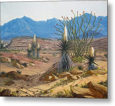 Desert Streams Metal Print by Rick Mittelstedt