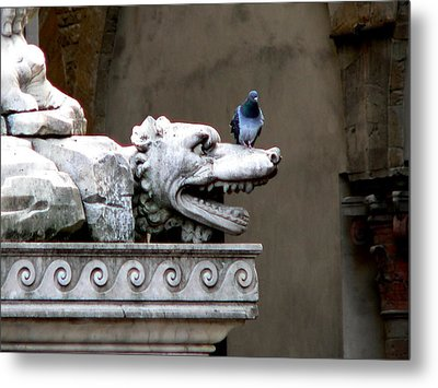 Despised Pigeon Metal Print by Eric Tressler