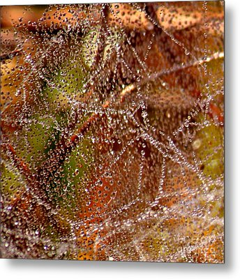 Dewdrops - Colorful Abstract Metal Print by Carol Groenen