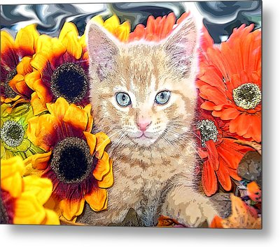 Di Milo - Sun Flower Kitten With Blue Eyes - Kitty Cat In Fall Autumn Colors With Gerbera Flowers Metal Print by Chantal PhotoPix
