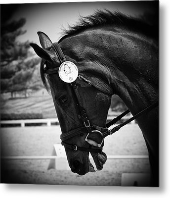 Metal Print featuring the photograph Discipline by Carrie Cranwill