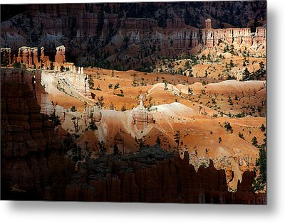 Metal Print featuring the photograph Do You Bielive In Magic by Vicki Pelham