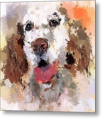 Dog Pet Metal Print by Yury Malkov