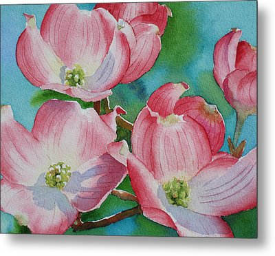 Dogwood Afternoon Metal Print by Judy Mercer