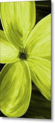 Dogwood Bloom Yellow Metal Print by Mark Moore