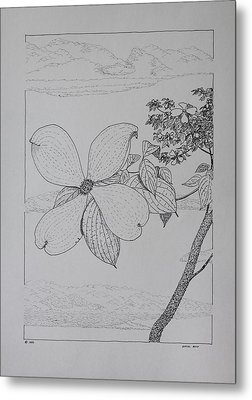 Metal Print featuring the drawing Dogwood  by Daniel Reed