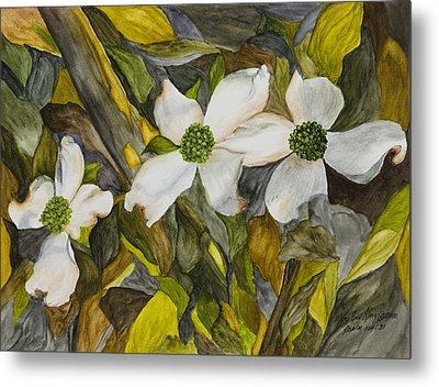 Dogwoods Metal Print by Mary Ann King