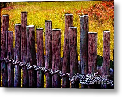 Don't Fence Me In Metal Print by Judi Bagwell
