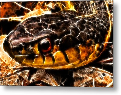 Metal Print featuring the photograph Don't Tread On Me by Joetta West