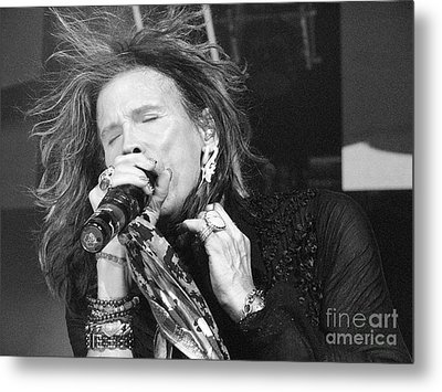 Don't Want To Miss A Thing Metal Print by Traci Cottingham
