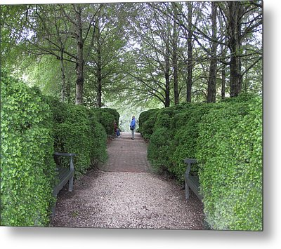 Down The Garden Path Metal Print