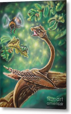 Dragon Metal Print by Daniel Stimpel
