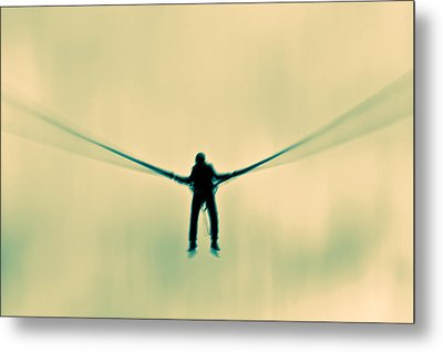 Metal Print featuring the photograph Dragonfly by Justin Albrecht