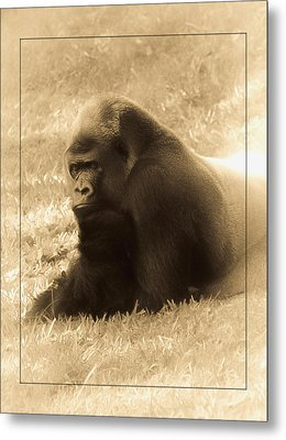 Dreaming Of Home Metal Print by DigiArt Diaries by Vicky B Fuller