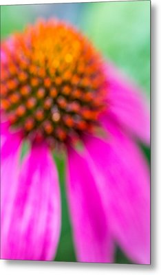 Dreamy Abstract Coneflower  Metal Print by Susan Stone