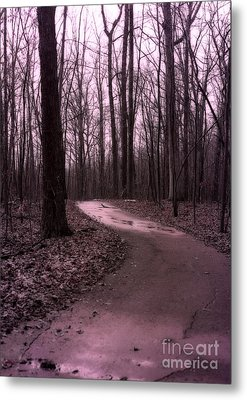 Dreamy Surreal Fantasy Woodlands Nature Path Metal Print by Kathy Fornal