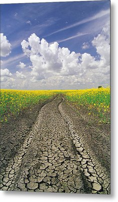 Dried Up Machinery Tracks Metal Print by Dave Reede