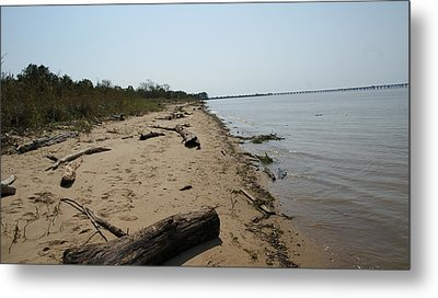 Metal Print featuring the photograph Driftwood by Charles Kraus