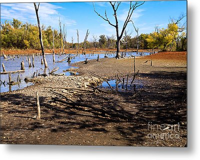 Drought In The Flint Hills Metal Print by Lawrence Burry