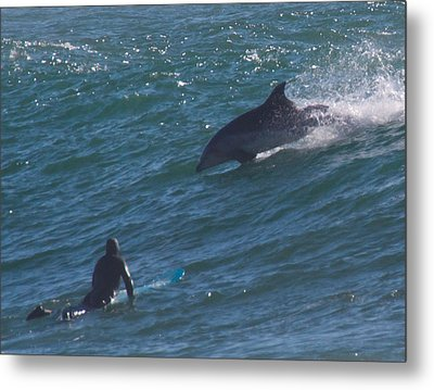 Dude Metal Print by Peggy Zachariou