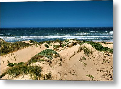 Dunes And The Pacific Metal Print by Steven Ainsworth