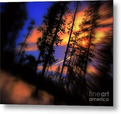Metal Print featuring the photograph Dusk by Irina Hays