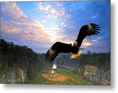 Metal Print featuring the photograph Eagle At Paint Creek Dam by Randall Branham