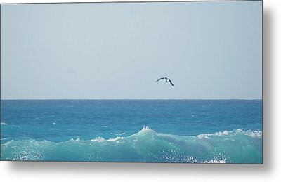 Eagle Flying Over Sea Metal Print