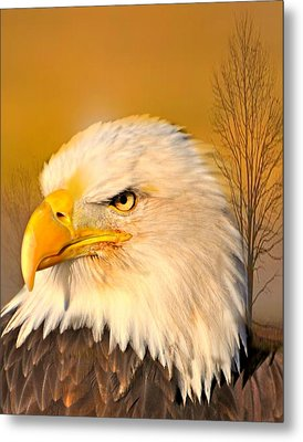 Eagle On Guard Metal Print by Marty Koch