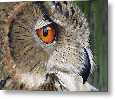 Eagle Owl Metal Print by Mike Lester
