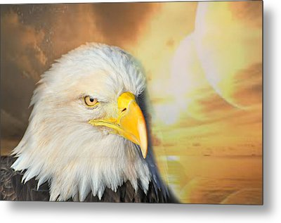 Eagle Sun Metal Print by Marty Koch