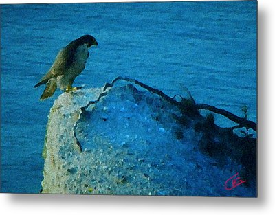 Eagle View Metal Print by Colette V Hera  Guggenheim