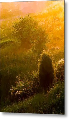 Early Gloaming Metal Print by Ron Jones