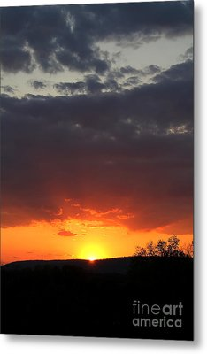 Metal Print featuring the photograph Early Light by Everett Houser