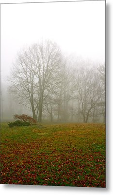 Early Morning Fog Metal Print by Ann Murphy