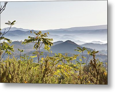 Early Morning Mists Metal Print
