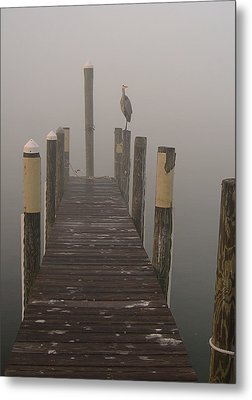 Early Morning On The Dock Metal Print by Dorothy Cunningham