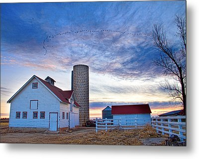 Early Morning On The Farm Metal Print by James BO  Insogna