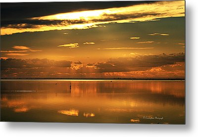 Early Morning Rise Metal Print by Dorothy Cunningham