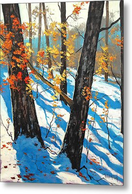 Early Winter Metal Print by Graham Gercken